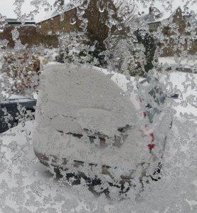 Snow March 22 b