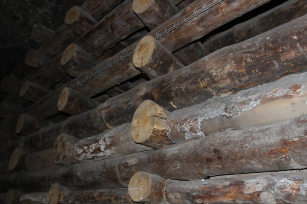 Traditional timber supports