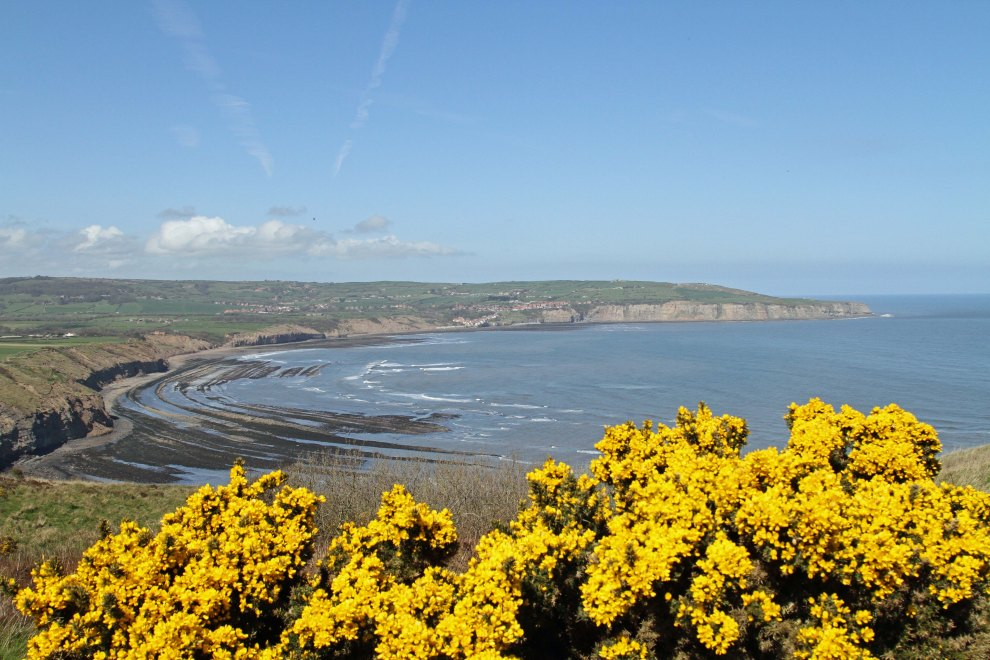 Robin Hood's Bay from Ravenscar