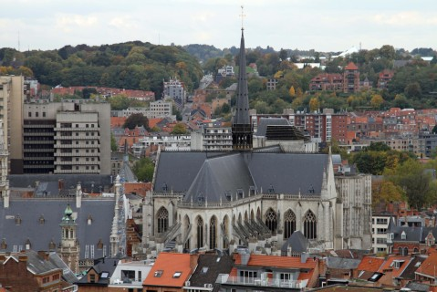 View of Sint-Pieterskerk, in the centre oLeuven, from the bell tower balcony