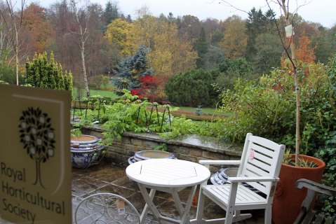 My view of patio, gardens and woodland